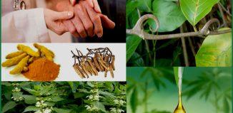 reuma gyógyítás